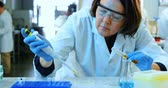 pipeta : Attentive female scientist experimenting in laboratory 4k