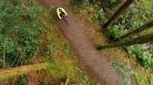 liège : Aerial view of man riding bicycle in the forest 4k