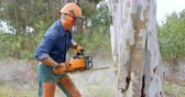 motorsäge : Side view of lumberjack with chainsaw cutting tree trunk in forest 4k Stock Footage