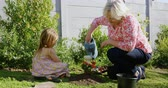 unoka : Grandmother and granddaughter watering plant in the garden on a sunny day