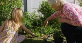výsadba : Grandmother and granddaughter planting in garden on a sunny day 4k