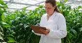 observar : Female scientist writing on the clipboard in the greenhouse 4k Vídeos