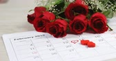 marcado : Bouquet of red roses on the calendar showing 14th February. Valentines day concept 4k Stock Footage