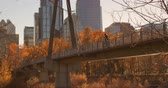 zábradlí : Side view of Caucasian man standing on bridge with bicycle in the city. High-rise buildings and autumn trees on a sunny day 4k