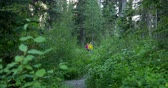 veslo : Front view of hiker couple walking on a pathway in the dense forest. Hiker couple hiking in the dense forest 4k Dostupné videozáznamy