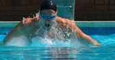 пловец : Male swimmer swimming inside pool. Man swimming under water 4k