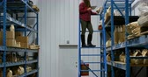 paketlenmiş : Side view of caucasian female worker checking packed goods in warehouse 4k