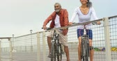 zábradlí : Front view of thoughtful active senior African American couple standing with bicycle on promenade. They are smiling and looking at sea 4k