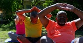 meditando : Front view of active mixed-race senior people performing yoga in the garden of nursing home. They are meditating together 4k