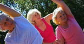 cittadino : Front view of active mixed-race senior people exercising in the garden of nursing home. They are exercising together 4k