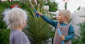 varinha : Front view of Caucasian siblings playing with bubble wand in garden. 4k