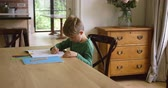 jídelna : Side view of Caucasian cute boy doing homework at dining table in a comfortable home. He is drawing a sketch with pencil 4k