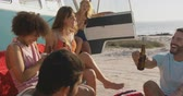 suntan : Handheld side view of a multi-ethnic group of young adult friends drinking bottles of beer, having fun and talking by a camper van on a beach. Summer fun with friends, they are on a road trip to the beach 4k