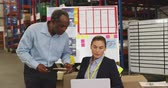 colega de trabalho : Close up front view of a middle aged African American holding a clipboard and talking to a young Caucasian woman sitting at a desk with charts and information behind her in a warehouse office. They are working in a freight transportation and distribution