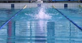borboletas : Front view of a young Caucasian female swimmer training in a swimming pool, butterfly
