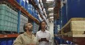 distribuzione : Side view close up of a young mixed race female warehouse manager using a tablet computer and a middle aged mixed race male warehouse worker holding a clipboard, walking down an aisle and inspecting shelves, talking and making notes in a storage warehouse Filmati Stock
