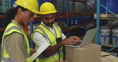 distribuzione : Side view close up of a young mixed race female warehouse worker holding a clipboard and a middle aged mixed race male warehouse worker using a laptop computer talking in a warehouse loading bay