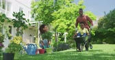kruiwagen : Front view of a happy African American couple and their young son in the garden, the man running, pushing his son in a wheelbarrow while the mother watches smiling, slow motion