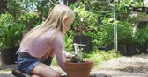 ültetés : Side view of a focused Caucasian girl with long blonde hair enjoying time in a sunny garden, exploring, planting a seedling in a pot, using garden fork, in slow motion