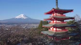 View Of Mount Fuji From Chureito Pagoda
