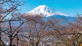 пагода : View Of Mount Fuji