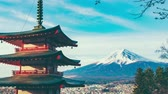 сакура : View Of Mount Fuji From Chureito Pagoda
