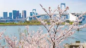 tradicionalmente : Time-Lapse Footage Of Tokyo Cityscape From Odaiba, Tokyo, Japan