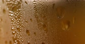 liquid light : Beer Bubbles And Foam Close-Up