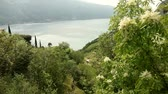 flank : video footage of the waterside of the lake garda in Italy