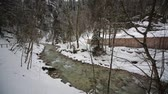garmisch : video footage of a river in winter in forest in Germany near the Partnachklamm, Garmisch-Partenkirchen