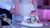 Close-up of the bride and groom cut the wedding cake Stock Footage