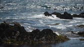 planar : beautiful view of the rocky shore of the ocean, lots of gulls.