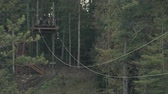 kiabálás : Men ride a zipline attraction in the woods