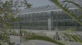 hortênsia : Big greenhouse with glass walls, foundations, gable roof, garden bed. 4k horticultural conservatory for growing vegetables and flowers. Classic cultivate greenhouse gardening. Sunny day.
