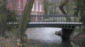 növényzet : Stream metallic Art Nouveau bridge. Garden project at swimming pool. Oasis of calm in the garden of the house. Castle Ornamental ricer. Brook with plants, creek. Natural garden park in springtime