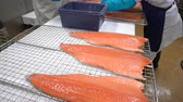 gutting : Working Team In A Seafood Processing Factory. Workers put the pieces of salmon fillet on a table for salting. Close up. Dolly Shot. Stock Footage