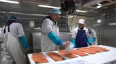 gutting : HANKO, FINLAND - NOVEMBER 14, 2016: Working Team In A Seafood Processing Factory. Man sprinkles the spices on the salmon fillet.