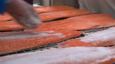 gutting : Workers applying salt on salmon fillets lying on table. Close up