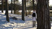 палка : Nordic walking - winter sport for all ages. Active people different ages hiking in snowy forest. Scenic peaceful scandinavian landscape. Стоковые видеозаписи