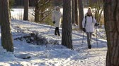bengala : Nordic walking - winter sport for all ages. Active people different ages hiking in snowy forest. Scenic peaceful scandinavian landscape. Vídeos