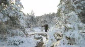 karelia : Tourist in the winter forest. Forest in snow near the Espoo. Finland.