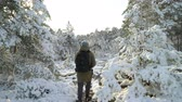 laponie : Tourist in the winter forest. Forest in snow near the Espoo. Finland.