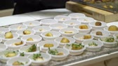 pavilion : The chefs prepare food samples and treat visitors during the Food Show Stock Footage
