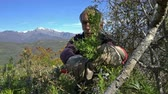 perennial : Collecting rosemary in the Alps. The Italian man cuts leaves and flowers of rosemary in the mountains in the north of Italy, with garden scissors.