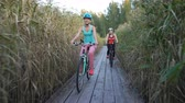 bicycles : Two young women ride bicycles on a wooden ecological trail among the reeds