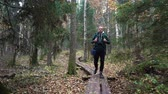 bozót : A middle-aged man with a backpack walking along an ecological natural educational trail through the northern autumn forest in a nature park in Finland. Slow motion