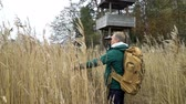 madármegfigzelés : A middle-aged man with a backpack walks along a water path through reeds to birdwatching tower on a lake, watching birds with binoculars in autumn in Finland. Slow motion