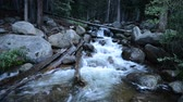 Mountain River in Colorado Wilderness. Dostupné videozáznamy