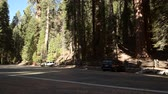 kings canyon : November 24, 2017. Park Visitors Cars on the Sequoia National Park Parking Area. California Sierra Nevada Mountain. United States of America.