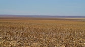 rocky mountains : Colorado Countryside Farmlands During Late Fall. Rocky Mountains on the Horizon. Stock Footage